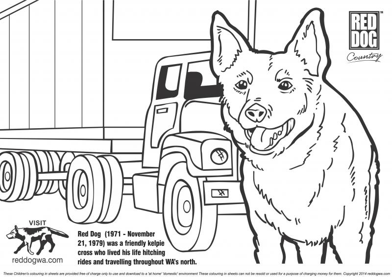 to down load red dog with a truck to your computer click here red dog colour in pages