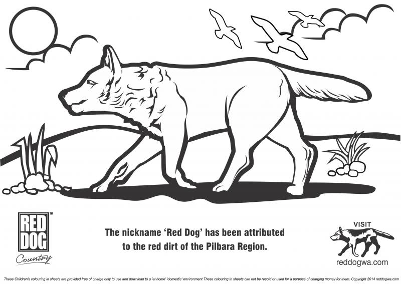 reddogwa.com™ - Free Red Dog Colouring In pages for Childrenplease ...